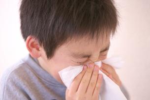 ティッシュで鼻をかむ男の子の写真素材 [FYI03244720]