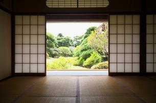 和室と庭園の写真素材 [FYI03244734]