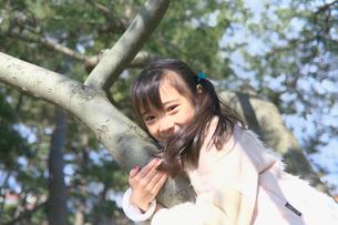 木登りをする女の子の写真素材 [FYI03244760]