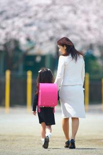 入学式に行く女の子と母親の写真素材 [FYI03244852]
