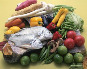 新鮮野菜とクロダイの写真素材 [FYI03245356]