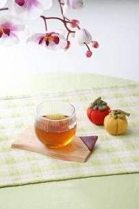 紅茶とランの花の写真素材 [FYI03245389]