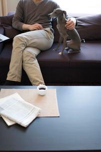 犬とソファーで寛ぐ男性の写真素材 [FYI03246181]