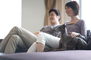 ソファーで寛ぐ男女と犬の写真素材 [FYI03246201]