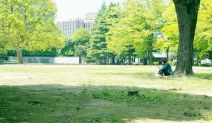 公園の写真素材 [FYI03246565]
