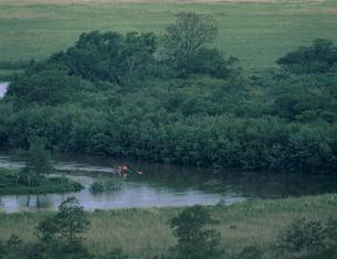 釧路川のカヌー下り 釧路湿原の写真素材 [FYI03246658]