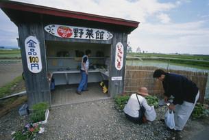 無人の百円野菜の店の写真素材 [FYI03246770]