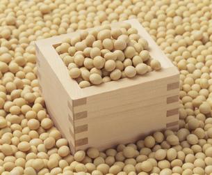大豆を升で計量するの写真素材 [FYI03248805]