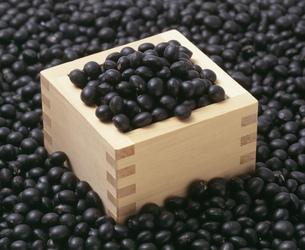 光黒大豆を升で計量するの写真素材 [FYI03248813]