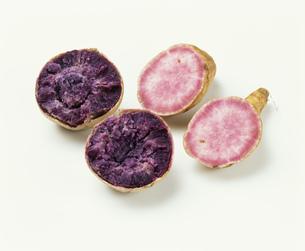 紫さつまいもの写真素材 [FYI03248888]