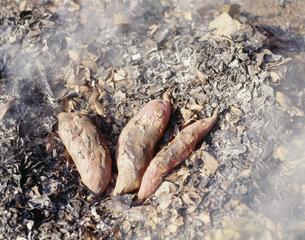 落葉焚きと焼芋の写真素材 [FYI03248942]