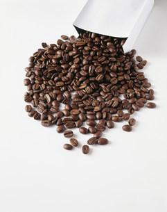 コーヒー豆のイメージの写真素材 [FYI03249009]