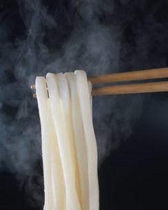 熱いうどんを箸で摘まむの写真素材 [FYI03249064]