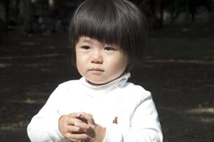 2歳の子供の写真素材 [FYI03249122]