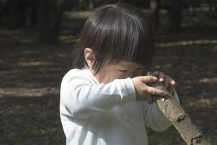 2歳の子供の写真素材 [FYI03249124]