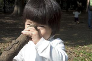 2歳の子供の写真素材 [FYI03249126]