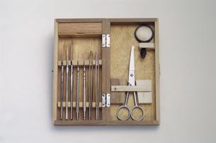 解剖道具セットの写真素材 [FYI03249157]