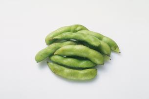 枝豆の写真素材 [FYI03249182]