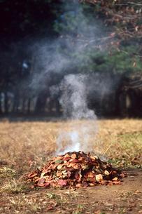 焚き火の写真素材 [FYI03249187]