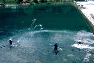 長良川での鮎つりの写真素材 [FYI03249214]