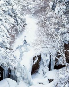雪の竜頭の滝の写真素材 [FYI03252859]