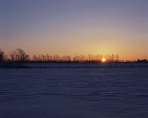 雪原の朝日の写真素材 [FYI03253614]