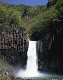 新緑の苗名滝の写真素材 [FYI03253698]