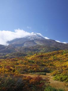 鳥海山と紅葉の矢島口の写真素材 [FYI03253791]
