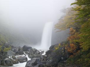 朝靄と紅葉の苗名滝の写真素材 [FYI03253798]