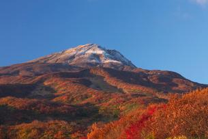 鳥海山矢島口の紅葉の写真素材 [FYI03253864]