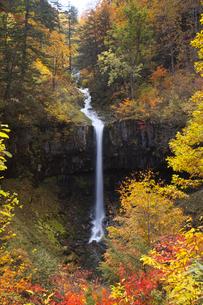 紅葉の曽利の滝 八幡平の写真素材 [FYI03253870]