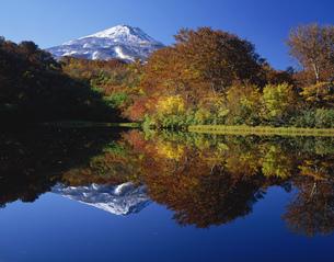 初雪の鳥海山と善神池の紅葉の写真素材 [FYI03254699]