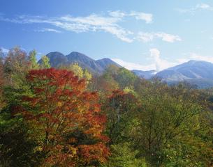 紅葉の飯田高原の写真素材 [FYI03255182]