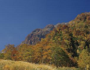 紅葉の燕温泉の写真素材 [FYI03255726]