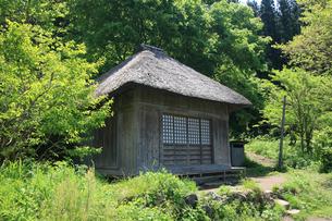 新緑の阿弥陀堂の写真素材 [FYI03255795]