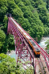 新緑の黒部峡谷鉄道 トロッコ列車の写真素材 [FYI03256006]