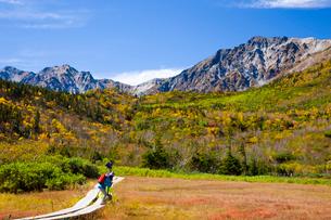 紅葉の栂池自然園の写真素材 [FYI03256046]
