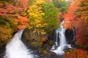 竜頭の滝の紅葉の写真素材 [FYI03256183]
