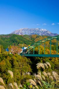 秋の大山と南大山大橋の写真素材 [FYI03256190]