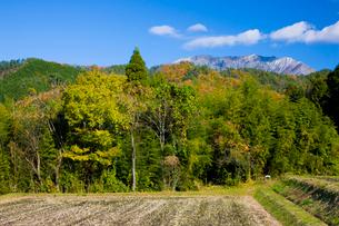 秋の大山山麓の写真素材 [FYI03256206]