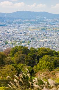 ススキゆれる若草山から奈良市街を望むの写真素材 [FYI03256279]