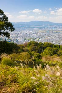 ススキゆれる若草山から奈良市街を望むの写真素材 [FYI03256281]