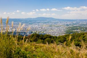 ススキゆれる若草山から奈良市街を望むの写真素材 [FYI03256284]
