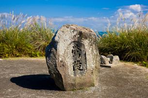 ススキゆれる若草山の鶯塚古墳の写真素材 [FYI03256286]
