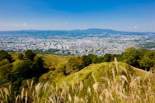ススキゆれる若草山から奈良市街を望むの写真素材 [FYI03256288]