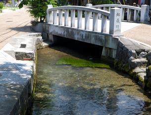 醒ヶ井宿の地蔵川の写真素材 [FYI03256485]