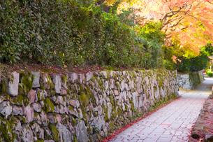 穴太衆積み石垣の残る門前町の写真素材 [FYI03256566]