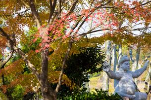 紅葉の相撲神社の写真素材 [FYI03256579]