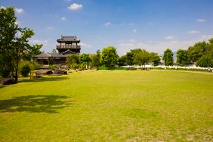 テッポウユリ咲く池田城跡公園の写真素材 [FYI03256698]