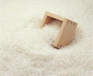 こしひかりの白米と桝の写真素材 [FYI03257363]